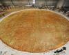 Самые большие пиццы мира